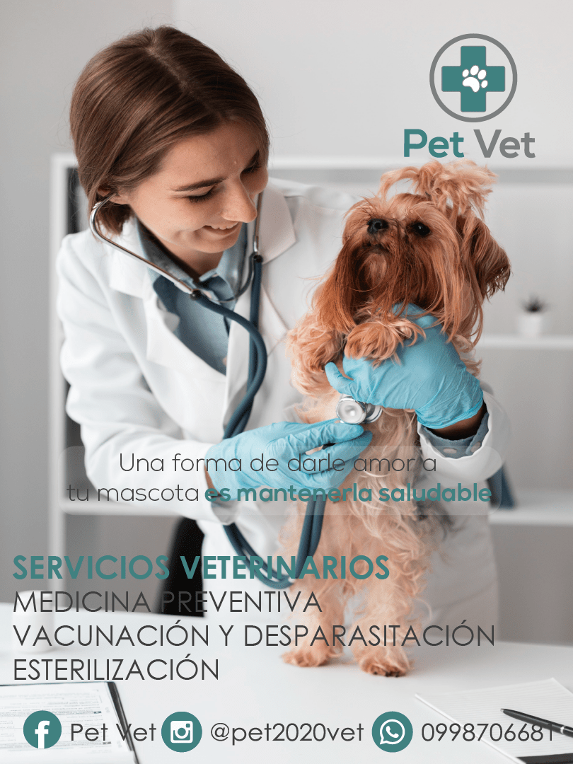 POST 2 VETERINARIA-02